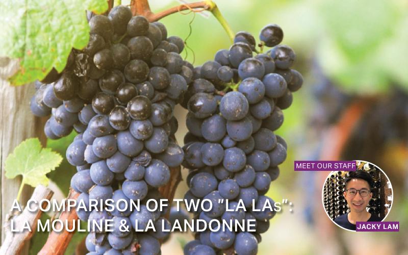 Fine Wine Friday: A Comparison of two