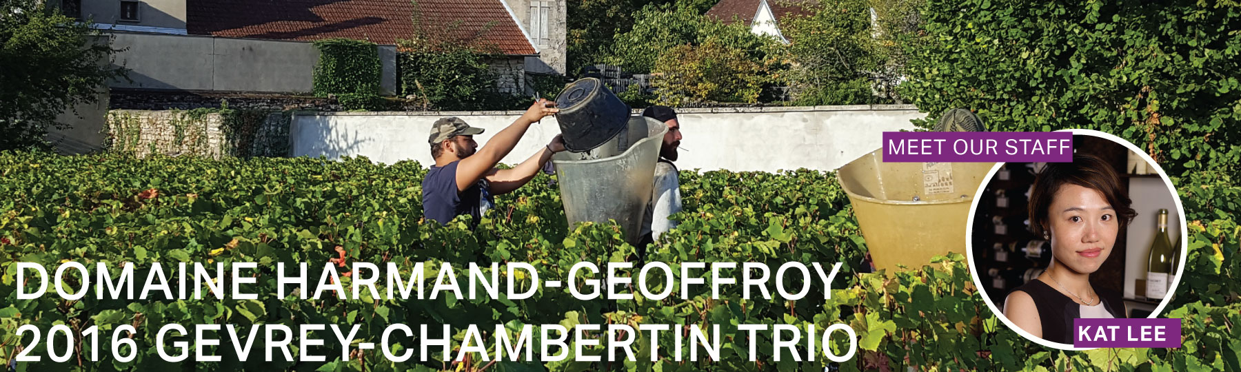 Fine Wine Friday: Domaine Harmand-Geoffroy 2016 Gevrey-Chambertin Trio