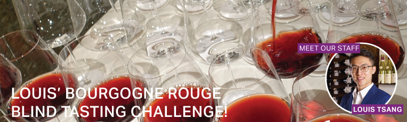 Fine Wine Friday: Louis' Bourgogne Rouge Blind Tasting Challenge