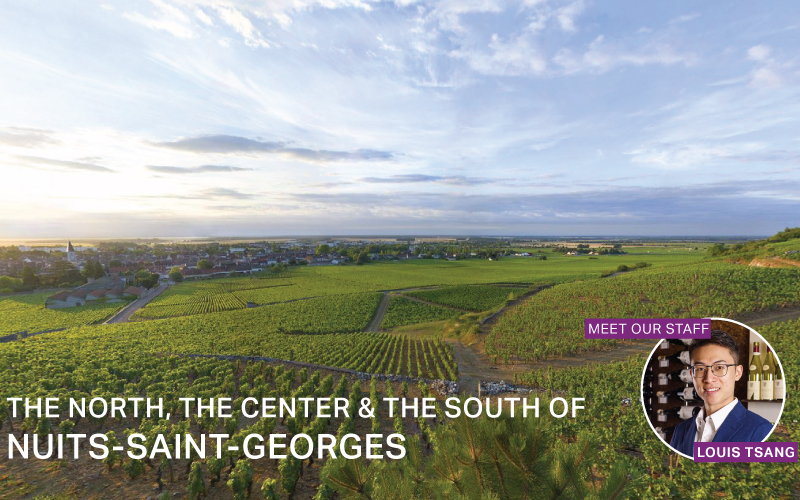 Fine Wine Friday: The North, The Center & The South Of Nuits-Saint-Georges