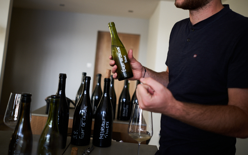 Tasting with Pierre-Vincent Girardin - A Rising Star in Burgundy