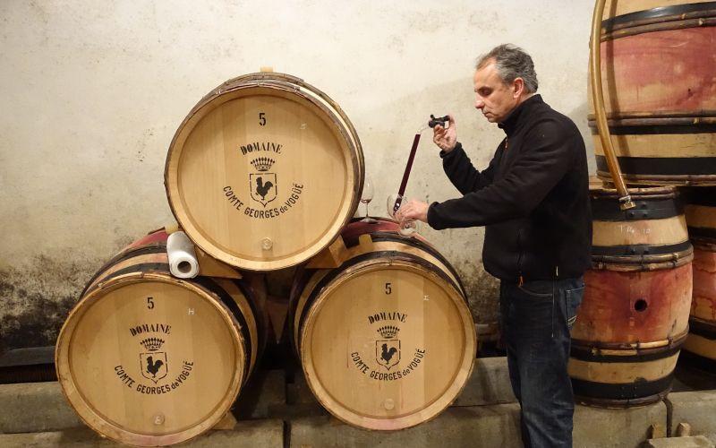 Domaine Comte Georges de Vogüé Appoints The Fine Wine Experience asExclusive Agent for Hong Kong