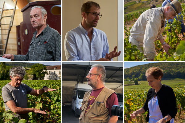 Come Explore Six Burgundy Domaines You Ought to Know, 26th March