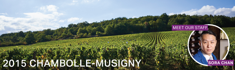 Fine Wine Friday: 2015 Chambolle-Musigny