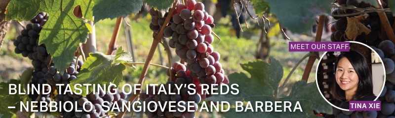 Fine Wine Friday: Blind Tasting of Italy's Reds - Nebbiolo, Sangiovese and Barbera