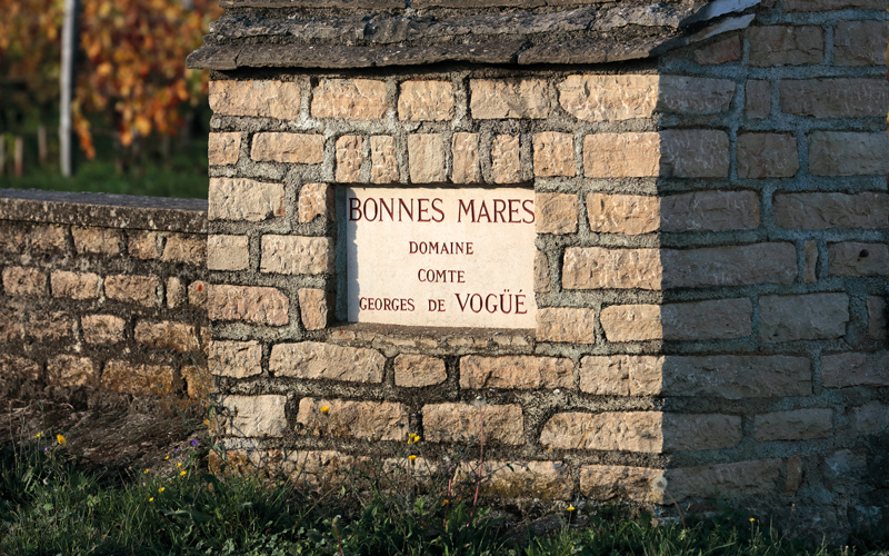2019 BURGHOUND SYMPOSIUM HONG KONG: Masterclass Luncheon:  Domaine Comte Georges de Vogüé, 2014 & 2002 with special guests: Jean-Luc Pépin and Allen Meadows