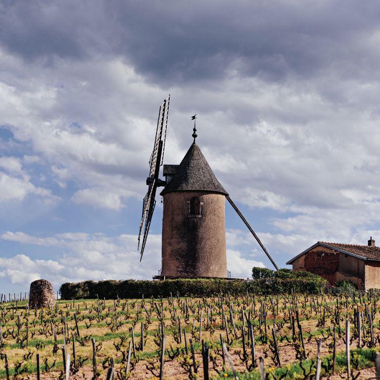 Chateau du Moulin-a-Vent